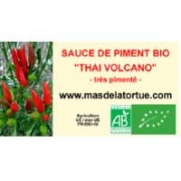 Thai Volcano